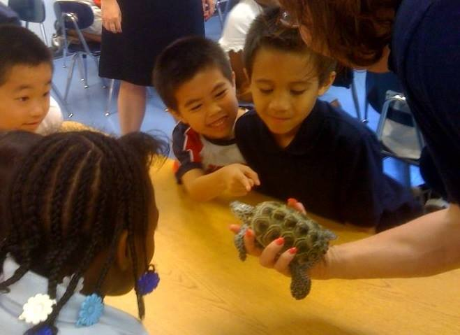 young children look at a turtle